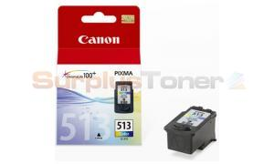 CANON CL-513 HIGH CAPACITY COLOUR INK CARTRIDGE (2971B001)