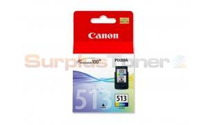CANON CL-513 INK CARTRIDGE COLOR HY (2971B004)