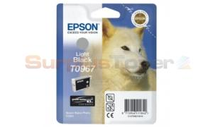 EPSON STYLUS PHOTO R2880 INK CTG LIGHT BLACK (C13T09674020)
